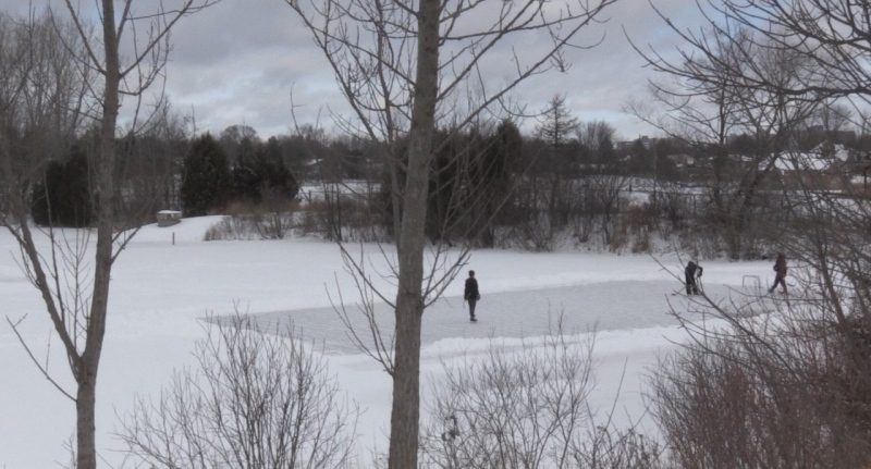 Officials asked skaters to leave a stormwater pond in London, Ont. on Wednesday, Jan. 27, 2021. (Jordyn Read/CTV London)