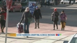 CTV Morning Live News Jan 28