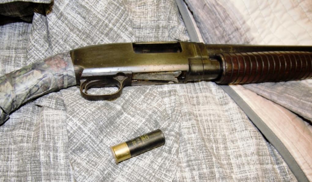 Sault shotgun
