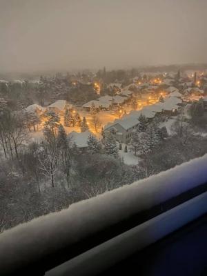 Snow Blankets London