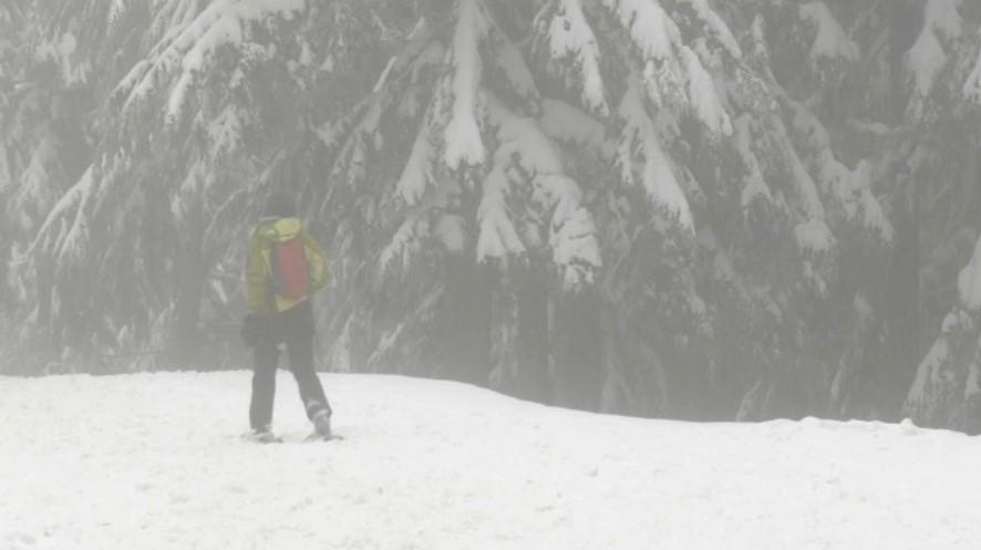 Dog Mountain Snowshoer