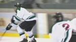 Hockey Winnipeg cancels remaining season