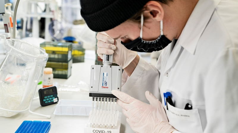 A researcher at Aalborg University screens and analyzes positive Danish COVID-19 tests for the new virus variant, in Aalborg, Denmark, Friday, Jan. 15, 2021. (Henning Bagger/Ritzau Scanpix via AP)