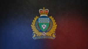 Winnipeg police