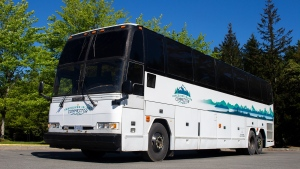 Wilson's Group has seen a 95 per cent decline in revenue since the pandemic began: (Vancouver Island Connector & Tofino Bus)