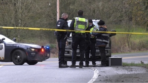"""The reason the man's car crossed the centre line and struck an oncoming pickup truck """"remains unknown,"""" police said in a statement Thursday. (CTV News)"""