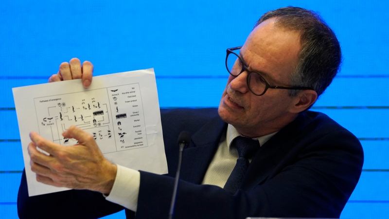 Peter Ben Embarek, of the World Health Organization team holds up a chart showing pathways of transmission of the virus during a joint press conference held at the end of the WHO mission in Wuhan, China, Tuesday, Feb. 9, 2021. (AP Photo/Ng Han Guan)