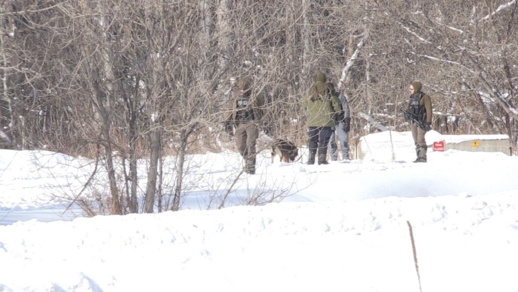 An OPP K9 unit has been brought in to search for