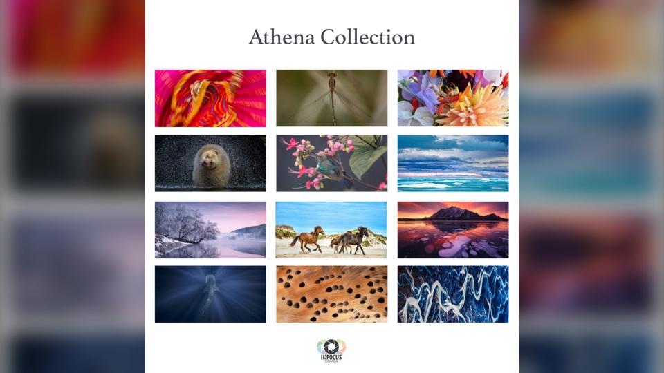Athena Collection