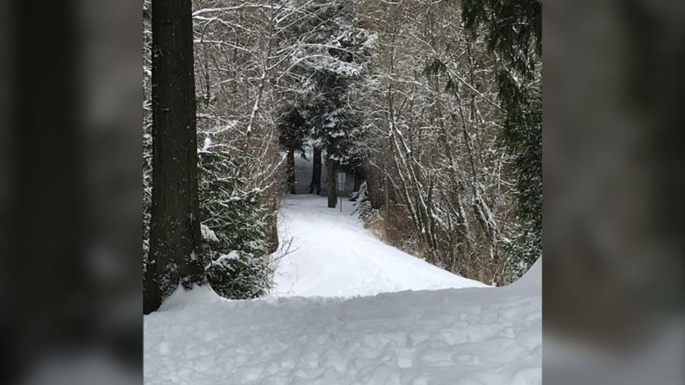 Langford Lake snow