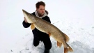 Keegan Ackerland is seen with a Northern Pike caught and released in the Collingwood Harbour in Collingwood, Ont. in this undated photo (supplied)