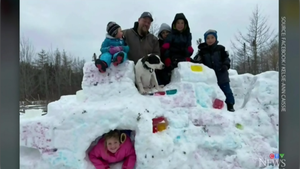 From snow sharks and snow castles, to frozen Bernie Sanders, residents are doing their best to make a one-of-a-kind creation.