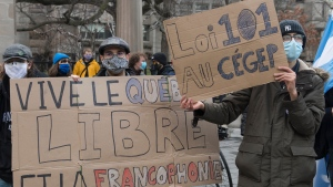 People take part in a demonstration outside McGill University in Montreal, Saturday, November 28, 2020, where they protested against government funding for infrastructure projects at two English-language educational institutions and also calling on the city of Montreal to set up a body to protect the French language. The COVID-19 pandemic continues in Canada and around the world.THE CANADIAN PRESS/Graham Hughes
