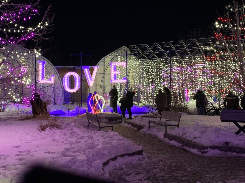 zoo lights display