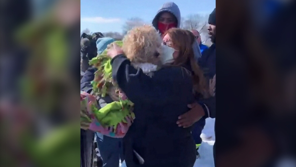 A stranded dog in the middle of the partially frozen Detroit River on the U.S.-Canada border for four days is now safe after an international rescue effort. (CNN)