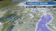 Cloudy skies, mild temperatures and possible snow