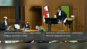 MPs pass motion declaring genocide against Uighurs in China, despite cabinet abstentions.