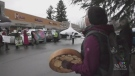 Island logging protesters surround Horgan's office