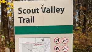Scout Valley Trail near Barrie Road in Orillia, Ont. (File Image)