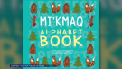 The book called Mi'Kmaq Alphabet Book is expected to be released in March. It is now available for pre-orders online.