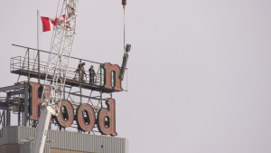 On Tuesday, a crane stretching 300 feet up in the air began taking down the letters of the Robin Hood sign atop the Ardent Mills plant. (Chad Hills/CTV Saskatoon)
