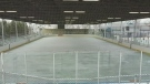 Where to skate in Windsor-Essex