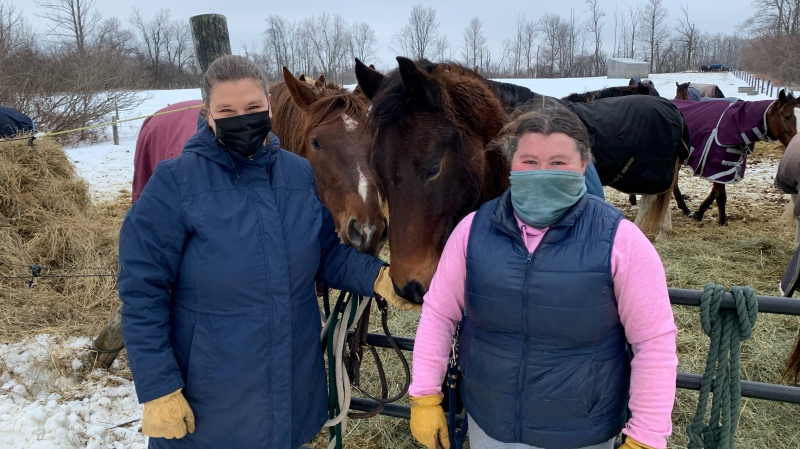 Vanbrook Equestrian Centre is dealing with an EHV-1 outbreak (Krista Sharpe / CTV News Kitchener)