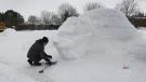 Innisfil man creates a larger than life ice sculpt