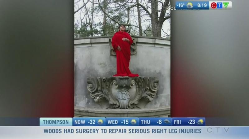 Winnipeg artist wins Governor General award
