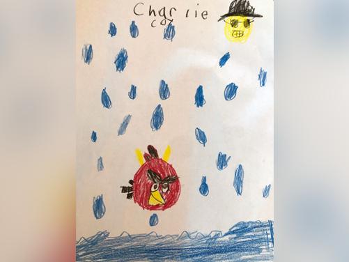 Weather Watcher - Charlie