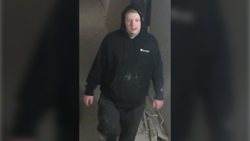 One of two persons of interest police are looking to identify caught on surveillance after a break and enter in Lakeshore, Ont. (courtesy Lakeshore OPP)