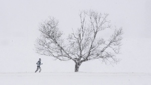 A jogger runs through the Central Experimental Farm during a snowstorm, Wednesday, Feb. 24, 2021 in Ottawa. (Adrian Wyld/THE CANADIAN PRESS)