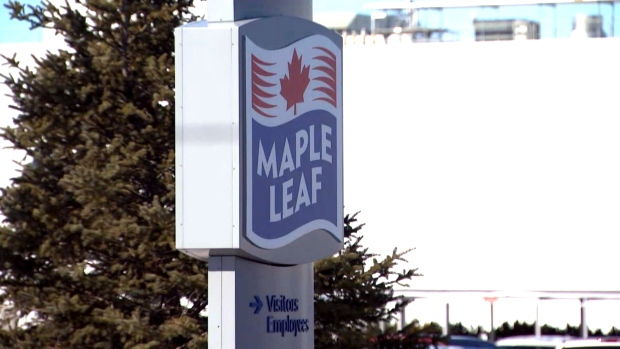One suspect is in custody following a double stabbing at a Maple Leaf Foods facility near Hamilton early Thursday morning.