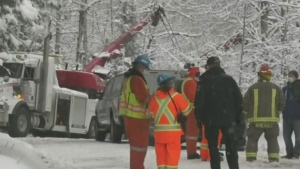 Workplace fatality claims life of 29-year-old