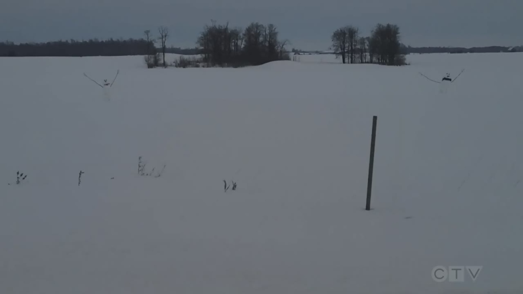 Perth County Snowmen