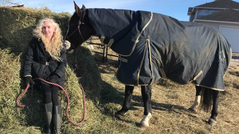 Adorado Nino Horse Rescue & Sanctuary president Tracy Benkendorf stands next to Fysik, three months after the horse found himself trapped in a muddy hole at a ranch just south of Edmonton. (Matt Marshall/CTV News Edmonton)