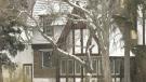 Cook House redevelopment denied