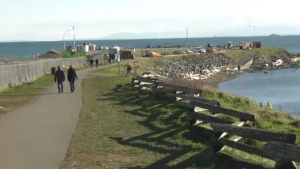 The City of Victoria plans to close half of the Clover Point loop road to vehicles to improve the area for pedestrians: (CTV News)