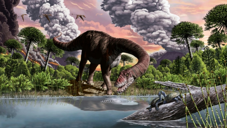 Long-necked sauropods