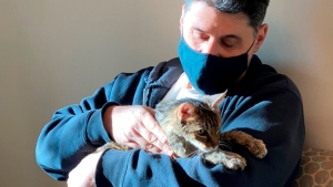 This photo provided by the Los Angeles County Department of Animal Care and Control shows Brandy, a brown tabby cat, that was reunited on Monday, Feb. 22, 2021, with her owner, Charles, (he would only give his first name) after she went astray for 15 years. (Los Angeles County Department of Animal Care and Control via AP)