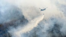 A helicopter dumps water on a wildfire in Ashikaga, Tochigi prefecture, north of Tokyo Wednesday, Feb. 24, 2021. (Kyodo News via AP)