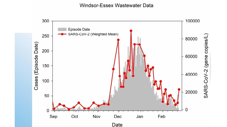 Wastewater data in Windsor-Essex, according to GLIER and the University of Windsor. (Courtesy WECHU)