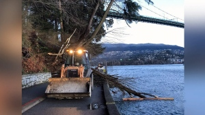 Wind warning in effect for Metro Vancouver