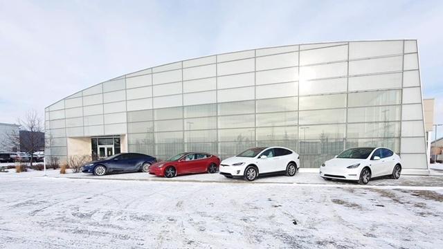 Teslas in Edmonton