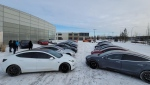 Tesla owners brought their vehicles to the rumoured site of Tesla's service centre on Jan. 23, 2021. (Courtesy: Adam Eustace)
