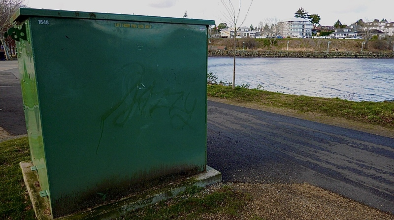 Some of the graffiti in the Maffeo Sutton Park area is shown: (CTV News)