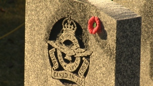 The No Stone Left Alone campaign leaves poppies on veterans' gravesites every November.