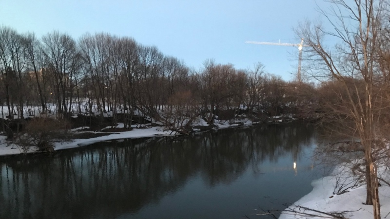 The Thames River in London, Ont. is seen Friday, Feb. 26, 2021. (Sean Irvine / CTV News)