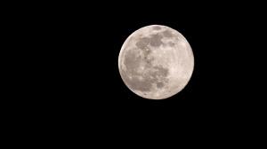 Snow Moon taken in Carman. Photo by Bev McLean.