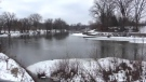 Thames River in London Ont. on Feb. 27, 2021. (Brent Lale/CTV London)